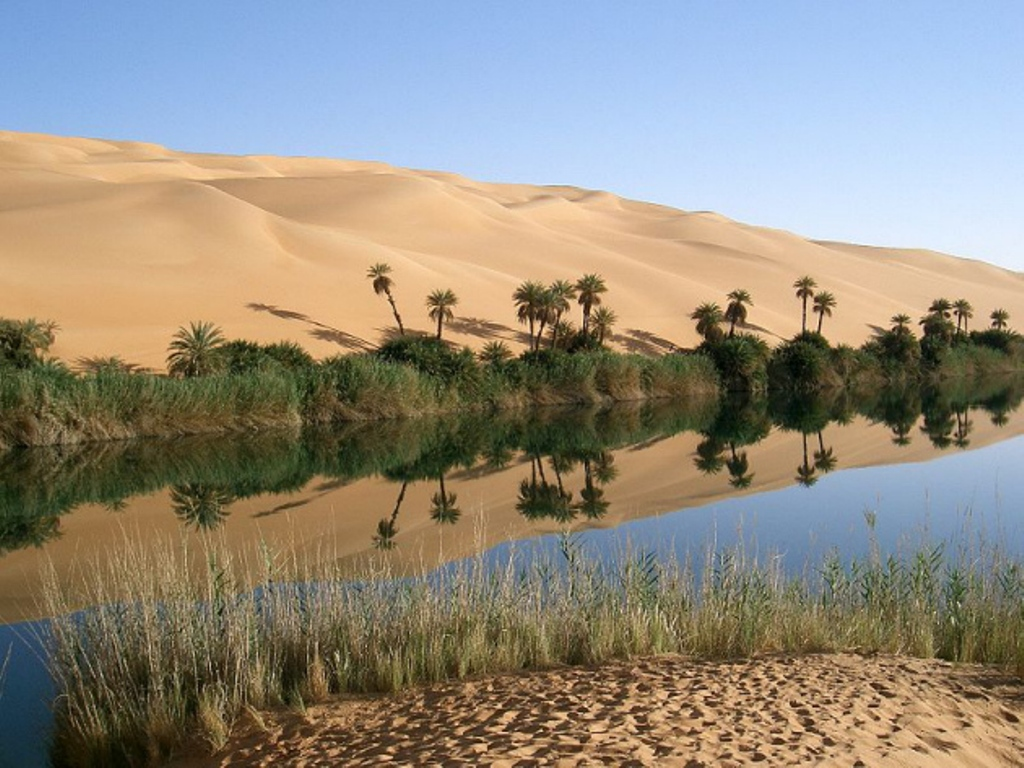 Oasis_in_Lybia-1